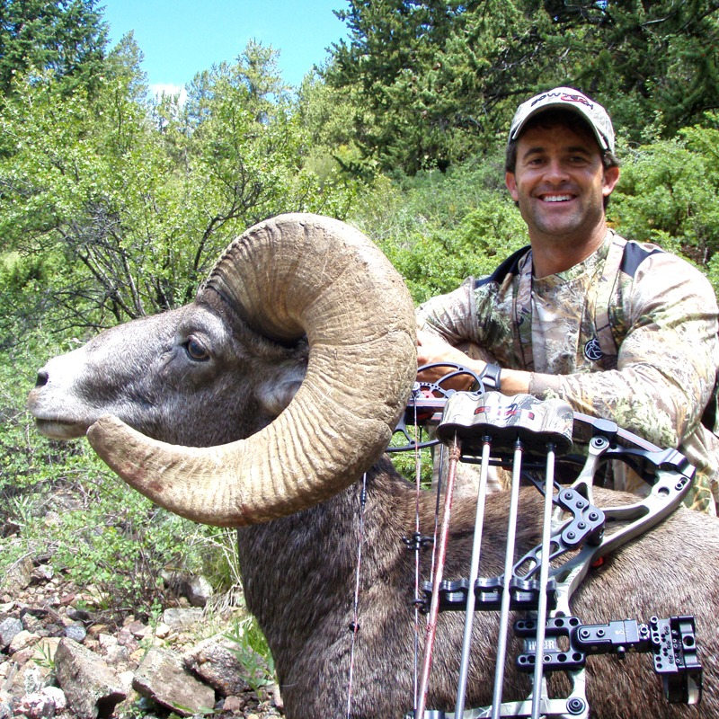 Colorado Bighorn Sheep, DIY 2010